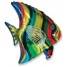 Шар (26''/66 см) Фигура, Тропическая рыба